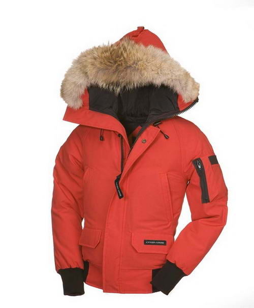 Canada Goose Down Jacket Kids Mode: 207915754