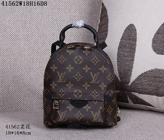 Louis Vuitton Back Pack ID:2017091037