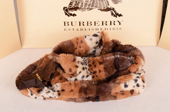 Burberry Scarves ID:201910b45