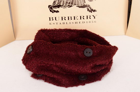 Burberry Scarves ID:201910b46
