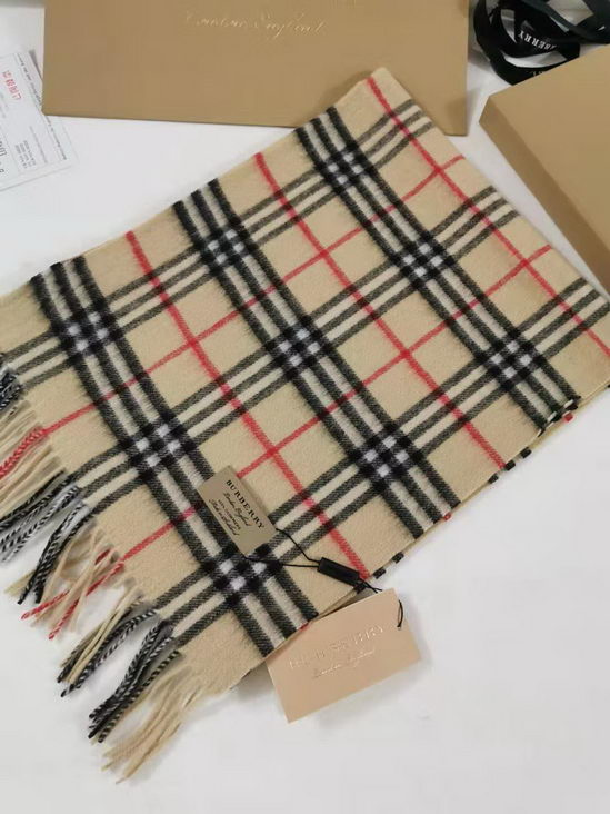 Burberry Scarves ID:201910b55