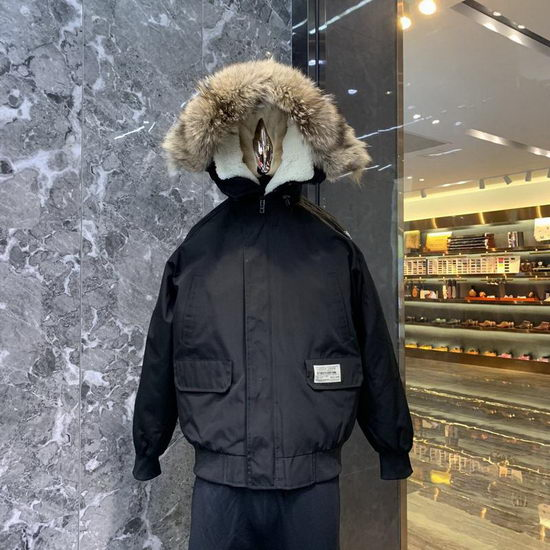 Canada Goose Down Jacket Wmns ID:201911c28