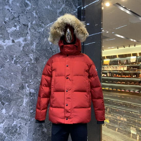 Canada Goose Down Jacket Wmns ID:201911c96