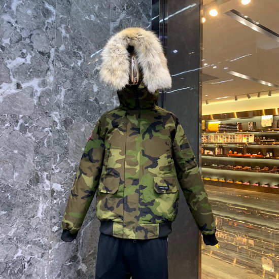 Canada Goose Down Jacket Wmns ID:201911c30