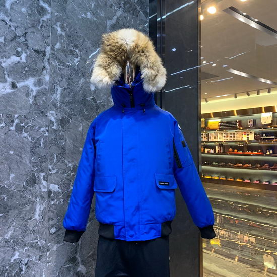 Canada Goose Down Jacket Wmns ID:201911c34