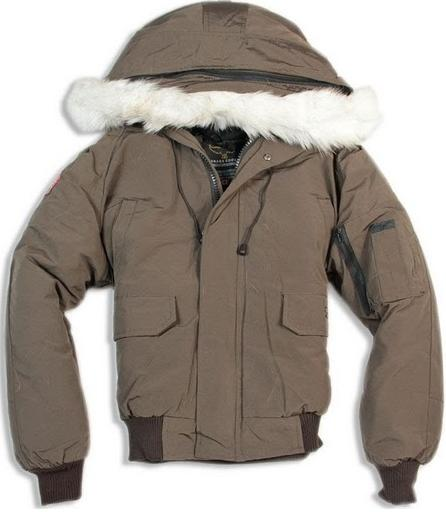 Canada Goose Chilliwack Bomber Jacket Brown Wmns